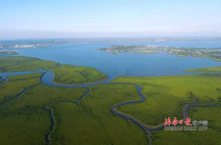 海口这6条中秋湿地主题旅游线路很赞