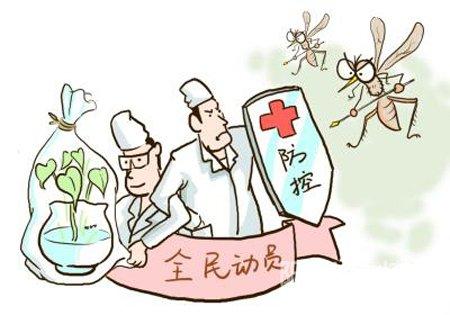 海南近期湿热蚊虫多需加强预防登革热
