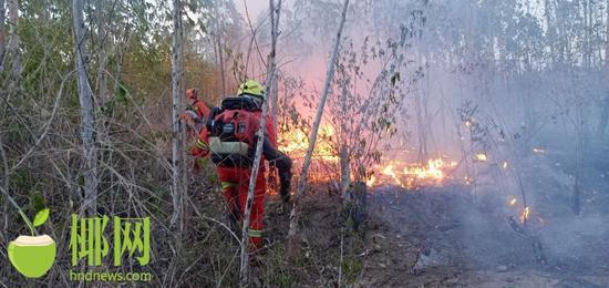 两天发生6起树林、草地火灾 昌江消防救援大队发出提醒