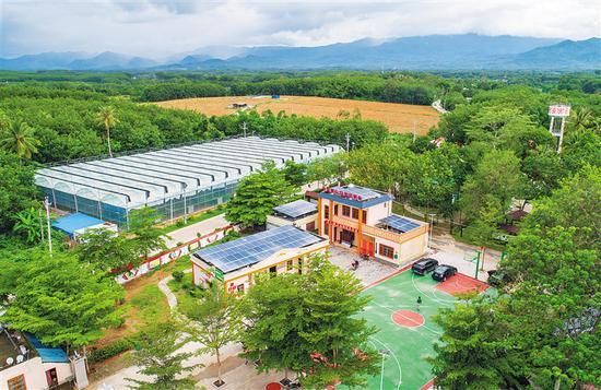 海南科技职业大学校内孵化企业产品应用于海口农村