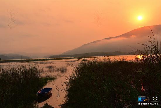 秋冬季节,堑对村口看日出。新华网发(陈仲和 摄)