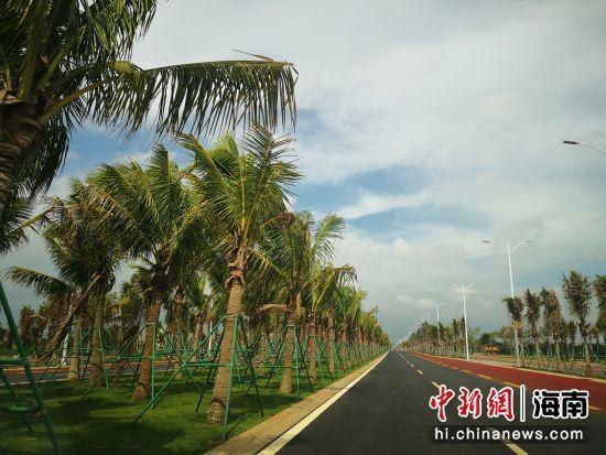 海口江东新区连接海口城区主干道路8月1日正式通车