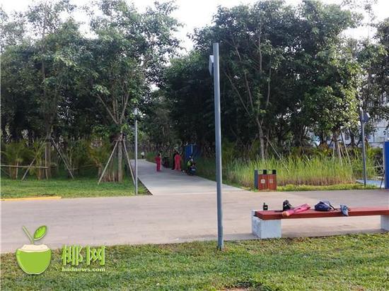 美舍河凤翔湿地公园老人在晨练