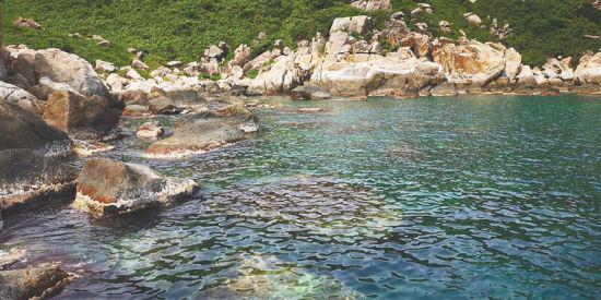 大洲岛的礁石。于伟慧 摄