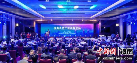 11月13日,海南未来产业高峰论坛在海口举行。 秀英区委宣传部 供图
