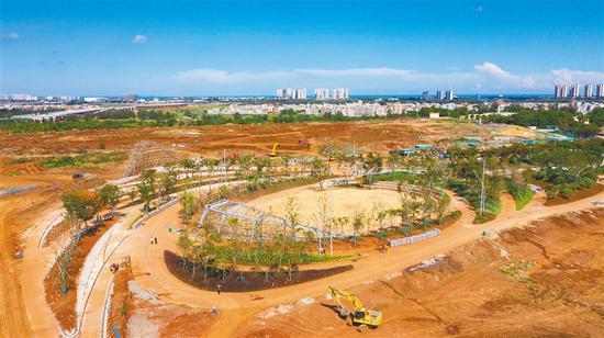 推进生态修复 海口西海岸建设公园绿地