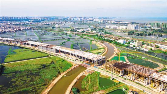 G15沈海高速公路海口段项目抢工时 赶进度