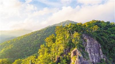 """海南热带雨林国家公园体制试点区GEP核算成果""""出炉"""""""
