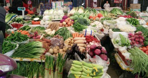 前5个月海南农贸市场菜价鲜猪肉价整体呈下降趋势