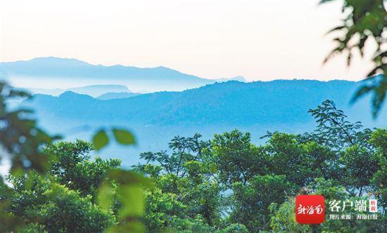 海南霸王岭东侧的热带雨林风光。海南日报记者 李天平 摄