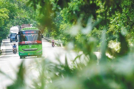 綠色出行!昌江56輛新能源公交服務城鄉交通