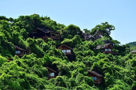 《【摩登2测速登录】暑假期间 亚龙湾人间天堂鸟巢度假村人气回升》