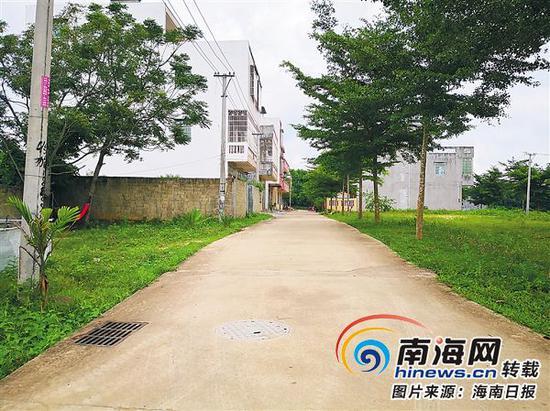 干净整洁的红花村村道。 见习记者 谢凯 摄