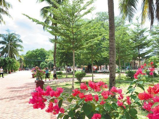 整洁美丽的南罗村。 本报记者 刘笑非 摄