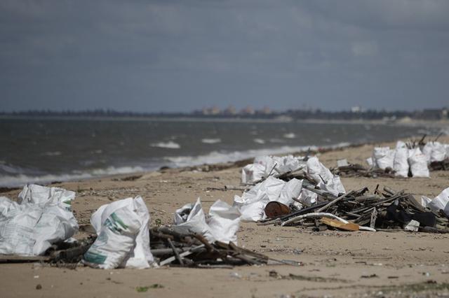 海口一海滩出现大量垃圾 环卫部门:2天内清理完毕