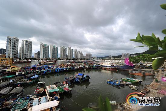 """9月14日,受今年第19号台风""""杜苏芮""""的影响,三亚渔船进港避风。南海网记者沙晓峰 摄"""