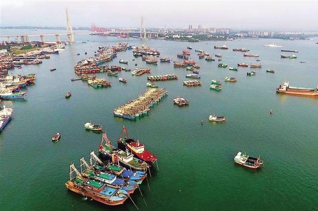 儋州白马井中心渔港通过竣工验收