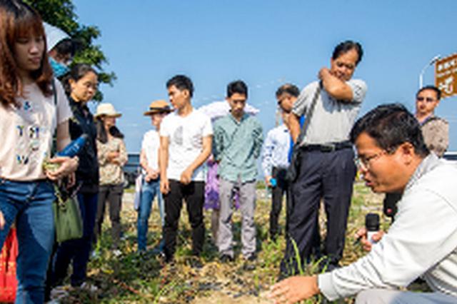 海南推广应用全生物降解地膜 首批试点农田近1万亩