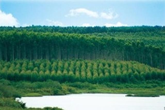 海南首个生态环境检察办公室挂牌成立