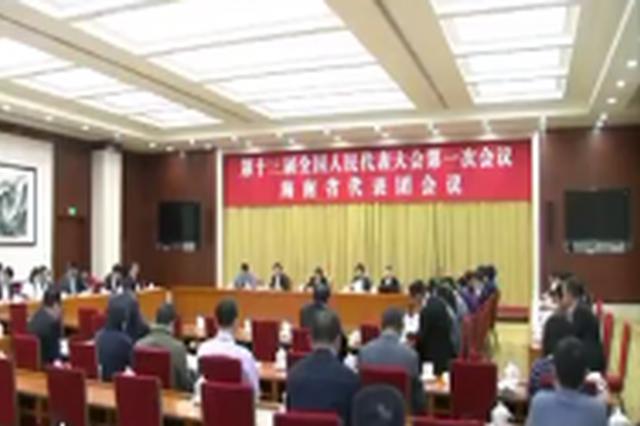 海南代表团举行全体会议 肖捷刘赐贵沈晓明等出席