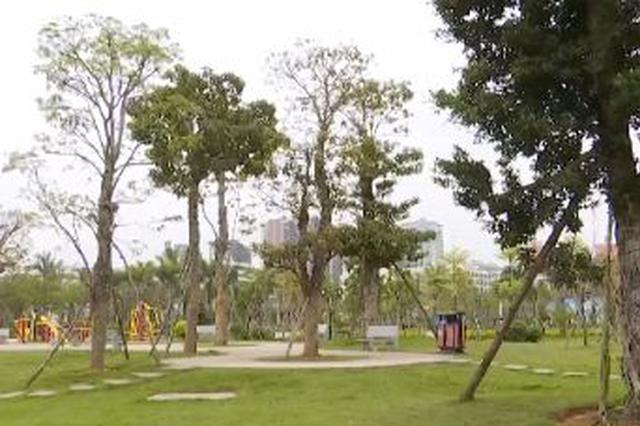 """文昌获""""省级园林城市""""称号 绿地面积达13平方米/人"""