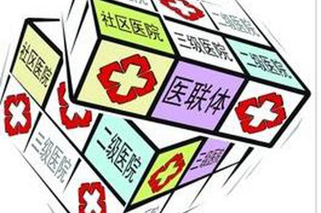 """儋州打造以海南西部中心医院作为核心的""""医疗联合体"""""""