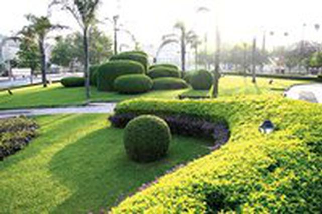 """文昌获""""省级园林城市""""称号 人均公园绿地面积13.23平方米"""