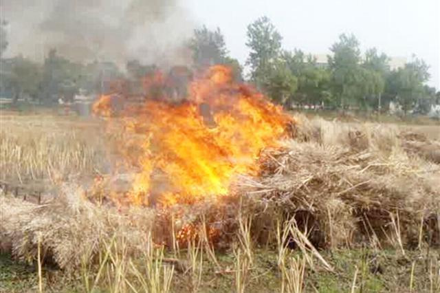 定安一村民焚烧秸秆造成大气污染 被依法行政处罚