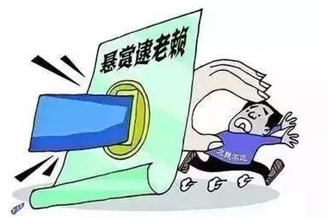 """举报""""老赖""""保险奖赏金 三亚法院建立悬赏保险机制"""