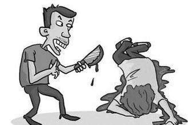 潜入学校杀害要分手的女友 陵水一男子被判死缓
