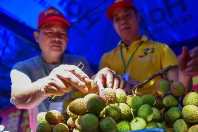 海南将提升农产品加工业水平 提高农业竞争力(图)