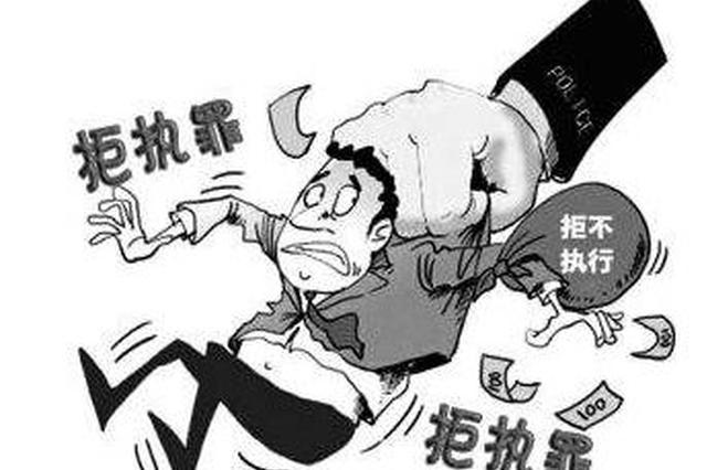 海南省政协委员潘某立因拒不执行判决、裁定罪被依法严惩