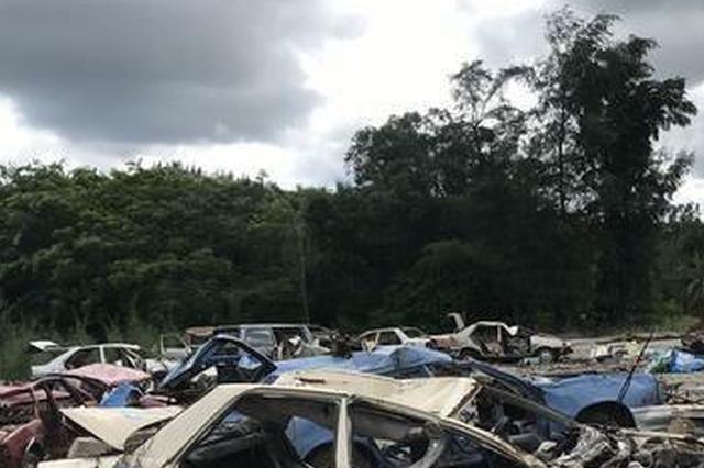 琼海荒地堆放上百辆报废车零部件扔得哪都是 责令清场
