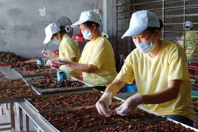 我省出台《槟榔加工行业污染物排行标准》