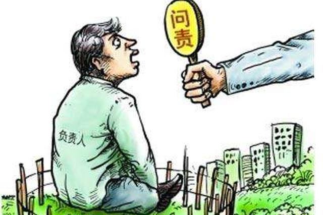 海南实行最严格的节约用地制度 坚决遏制炒买炒卖土地