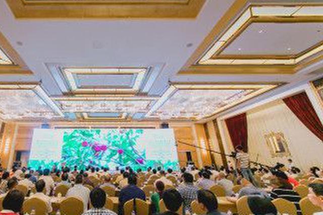 中国隐墅学院正式加盟海宿会 树立海南民宿产业新标杆