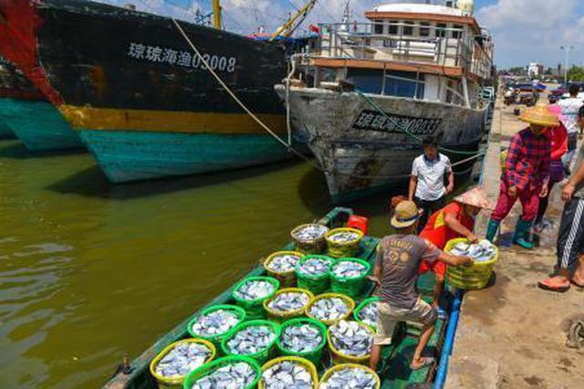 海南琼海传统渔港向休闲渔港转型