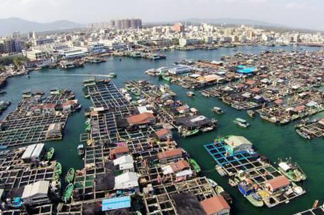 """海南陵水新村渔港:疍家人的""""两栖""""新生活"""