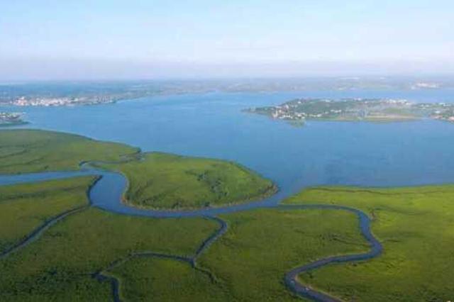 赶海摸螺...海口这6条中秋湿地主题旅游线路很赞!