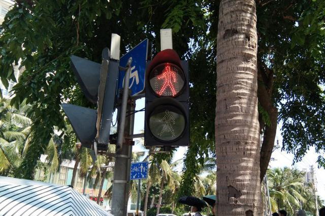 """海甸岛和平大道人行横道绿灯""""罢工"""" 已一周不亮"""