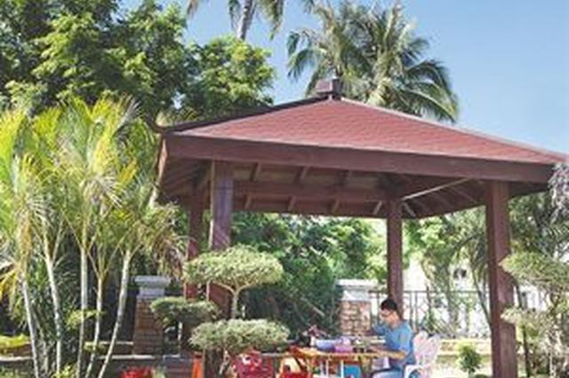 三亚乡村振兴有了规划路线图 拟建立考核评估体系