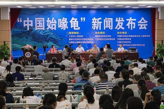 距今2.28亿年前!中国始喙龟化石于三亚首次公开
