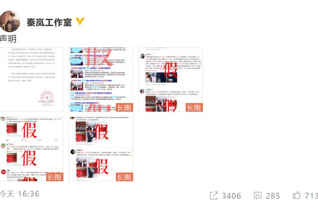 秦嵐工作室發聲明否認參演《長安諾》:虛假消息