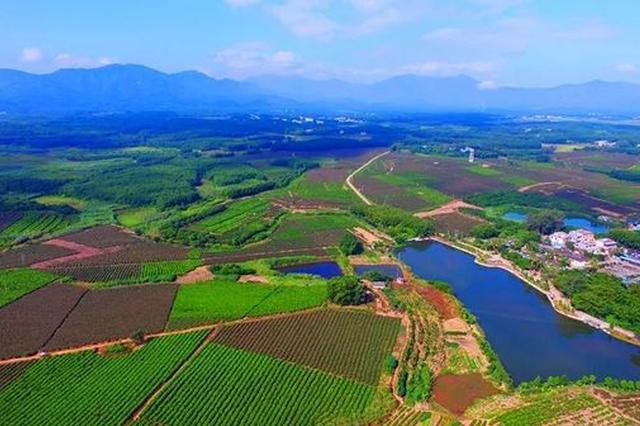 生态环境等优势持续提升海南人才吸引力