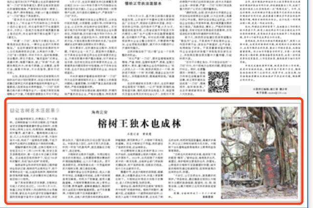央媒看海南丨人民日报点赞定安古树保护工作