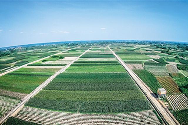 海南擬投近4000萬元支持品牌農業發展