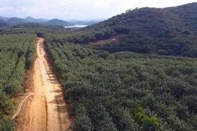 儋州投资5.26亿元修建3条旅游公路 预计2020年2月竣工