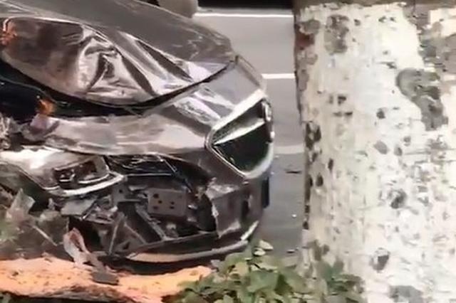 海口街头一小轿车撞上大树 安全气囊都被弹了出来