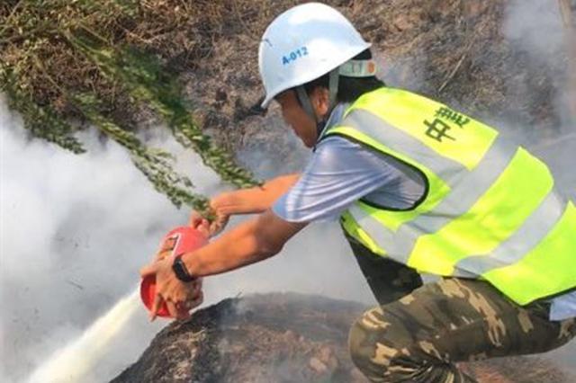 高温干燥!海口椰海大道多处绿化带起火