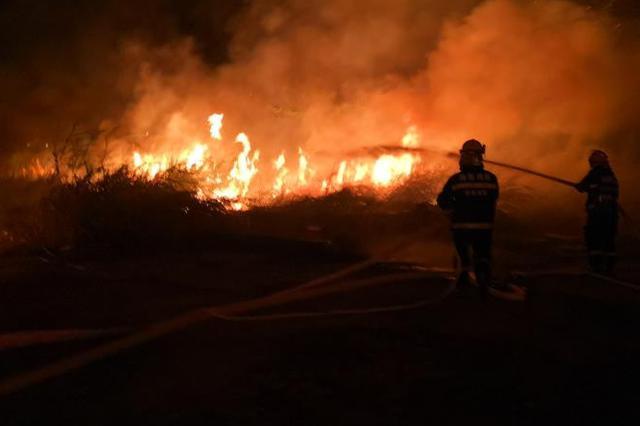 琼海市万泉河广场附近起火 所幸无人员伤亡